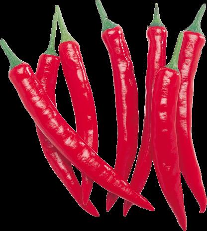 Peperoncini peccanti calabresi (Soverato)